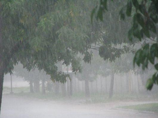 La zona norte de la provincia la más afectada por la abundantes lluvias