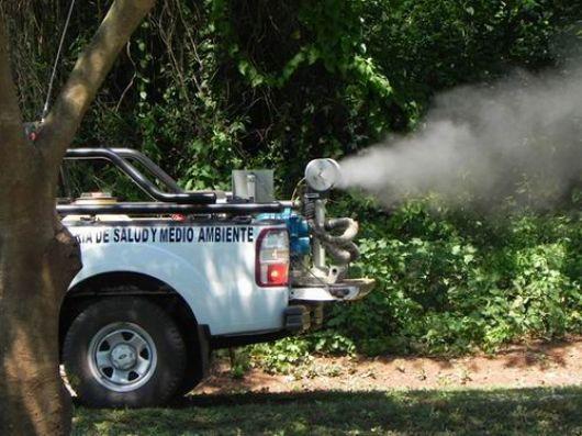 Dengue: preocupa la declaración de alerta en el vecino Paraguay