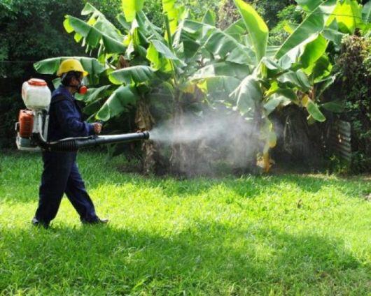 Descartan casos de dengue, pero sigue el riesgo
