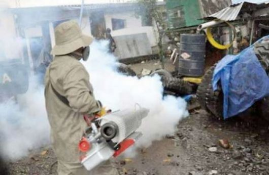 Dengue: los repelentes y la limpieza, armas contra la enfermedad