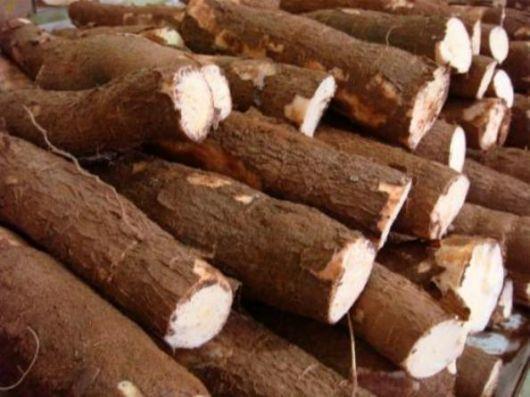 Es casi imposible conseguir harina de mandioca en Corrientes