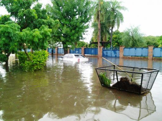 Relevan las consecuencias del temporal en Bella Vista para brindar inmediata asistencia