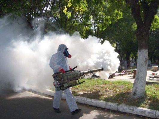 Dengue: creció un 24 por ciento la cantidad de infectados en el país