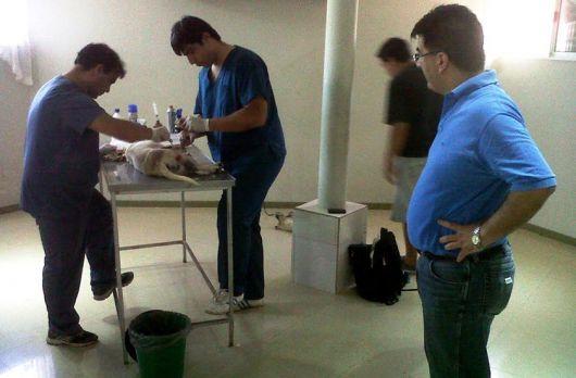 Salud municipal acompañando campaña de APA