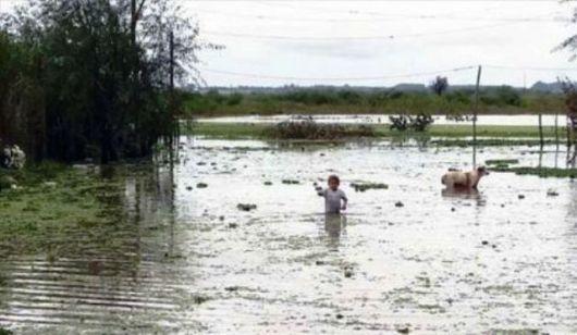 Goya: la intensa lluvia afectó algunos barrios y varias familias fueron asistidas