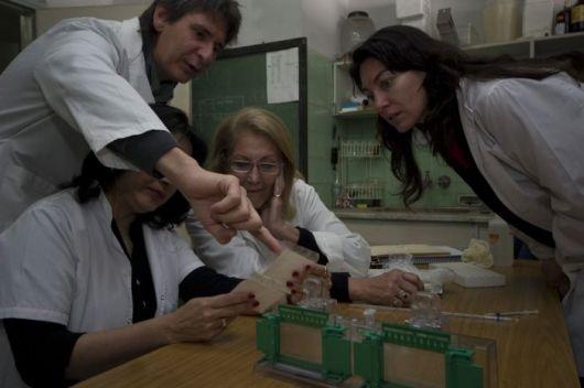 """Más de 200 grupos científicos en de las Jornadas """"UNNE Investiga 2014"""""""
