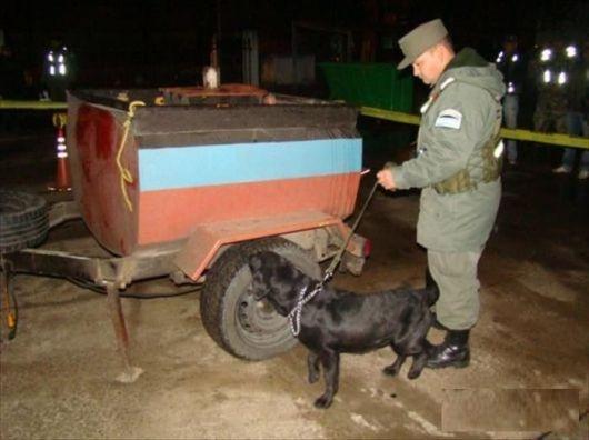 Secuestran más de 535 kilos de droga en el puente Belgrano
