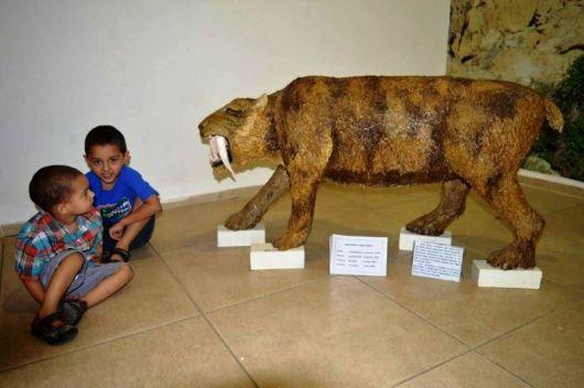 Gran aceptación de las actividades de verano en el Paleomuseo Toropí