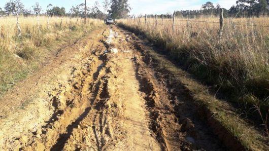 Recuperan Caminos en Colonia El Progreso e isla Alta