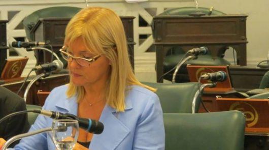 El senado trata un proyecto de ley de emergencia energética para Bella Vista