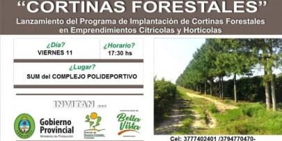 """""""Implantación de Cortinas Forestales en cultivos Citrícolas y Hortícolas"""""""