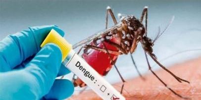 Confirman el Primer caso de  dengue en Bella Vista